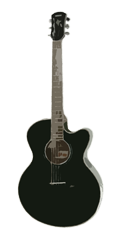 Jervis-Adult-Guitar-#192.png